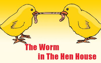 The 7 Noahide Laws and The Worm in The Hen House
